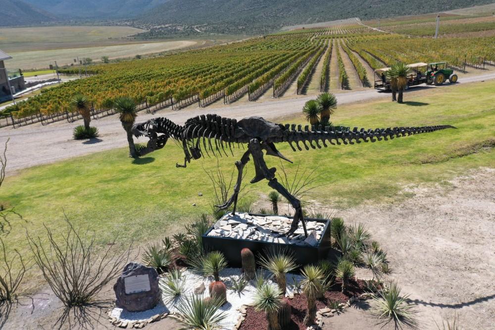 Viñedos Don Leo con su ícono paleontológico T REX